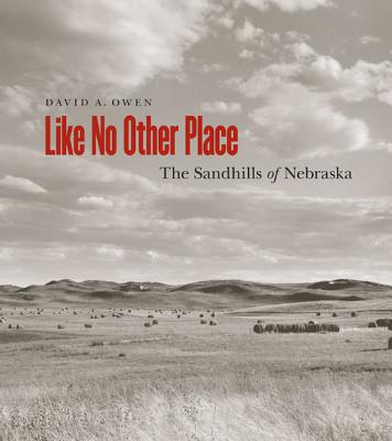 Like No Other Place By Owen, David